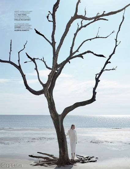 Russian Vogue Dead Tree 3