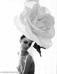 "Greg Lotus' new solo exhibition: ""Aspiration & Artifice"""